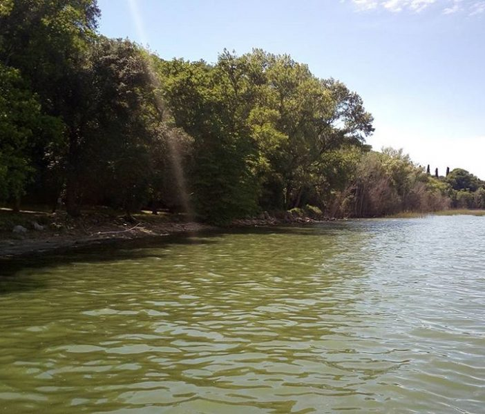 Lecceta di San Leonardo - Isola Polvese
