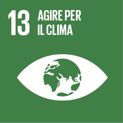 Obiettivo 13: Promuovere azioni, a tutti i livelli, per combattere il cambiamento climatico