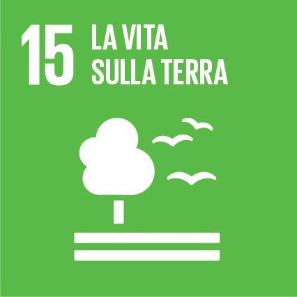 Obiettivo 15: Proteggere, ripristinare e favorire un uso sostenibile dell'ecosistema terrestre